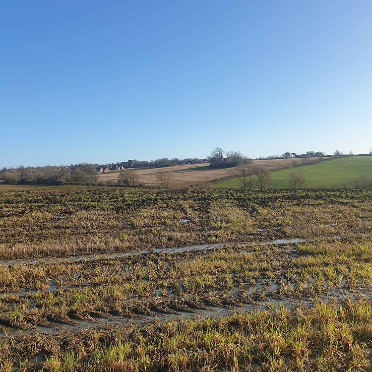muddy fields to run through