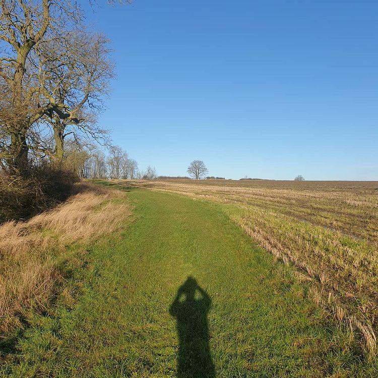 running through some fields